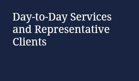 Day-to-Day Services and Representative Clients