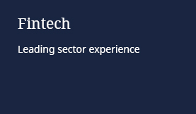 Fintech: Leading sector experience