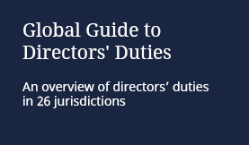global guide to directors duties