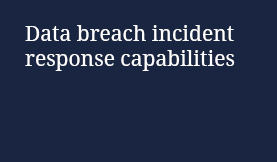 Data breach incident response capabilities