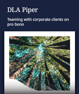 Pro Bono Client Collaboration brochure