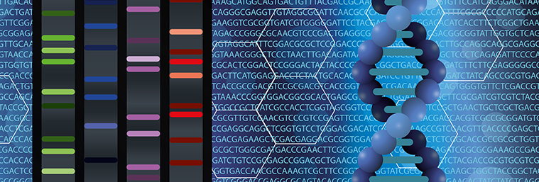 DNA, sequencing