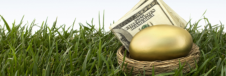 Image of a gold egg and money in a nest.
