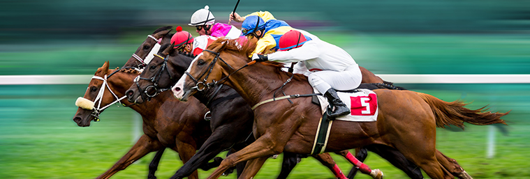 Image of race horses with jockeys on the home straight