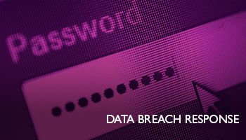 Data Breach Response